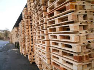Palletten Industrie